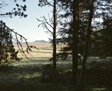 FD du Mont Aigoual, sept. 10