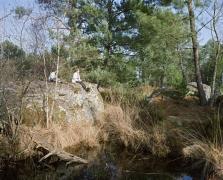 FD de Fontainebleau, fév. 09
