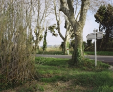 Saint-Rémy-de-Provence, avril 2011
